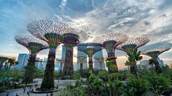 Tham quan vườn nhân tạo Gardens by the Bay tại Singapore