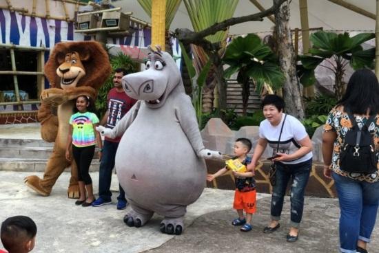 Một ngày đi chơi ở universal singapore