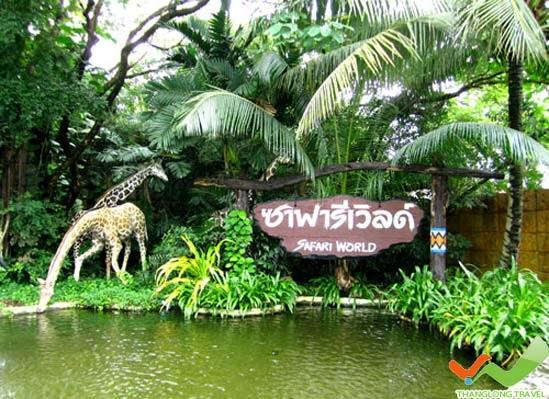 Hướng dẫn đặt vé tham quan Safari World ở Bangkok
